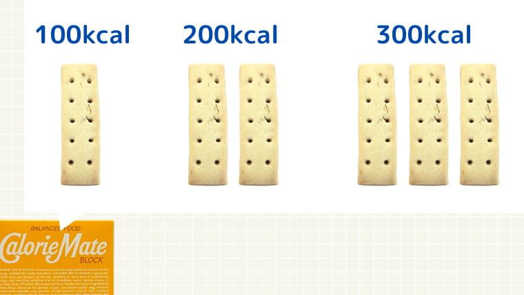 かんたんにカロリーを計算できる(ブロックタイプ)