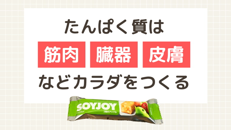 soyjoyにはカラダを作る大豆たんぱく質が豊富